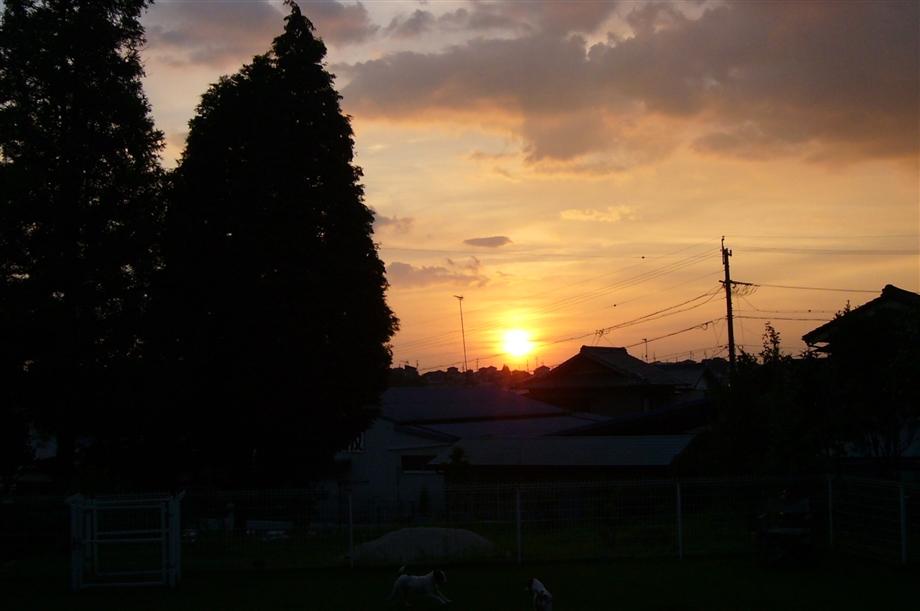 2011814lumix_006_r