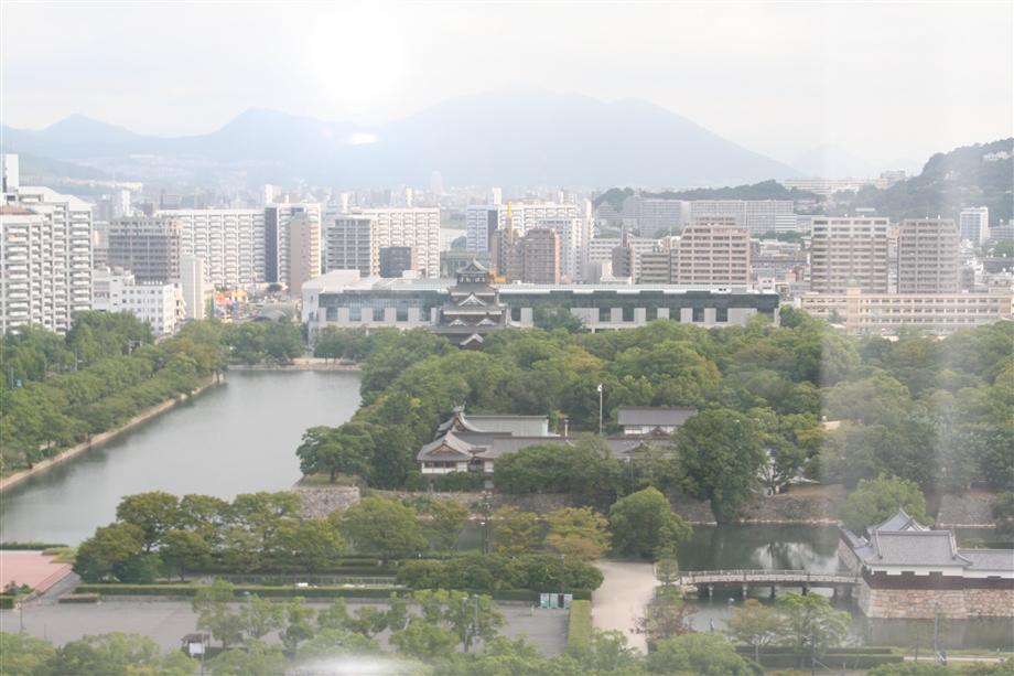 2011817_008_r