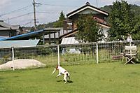 2011923_009_r_7